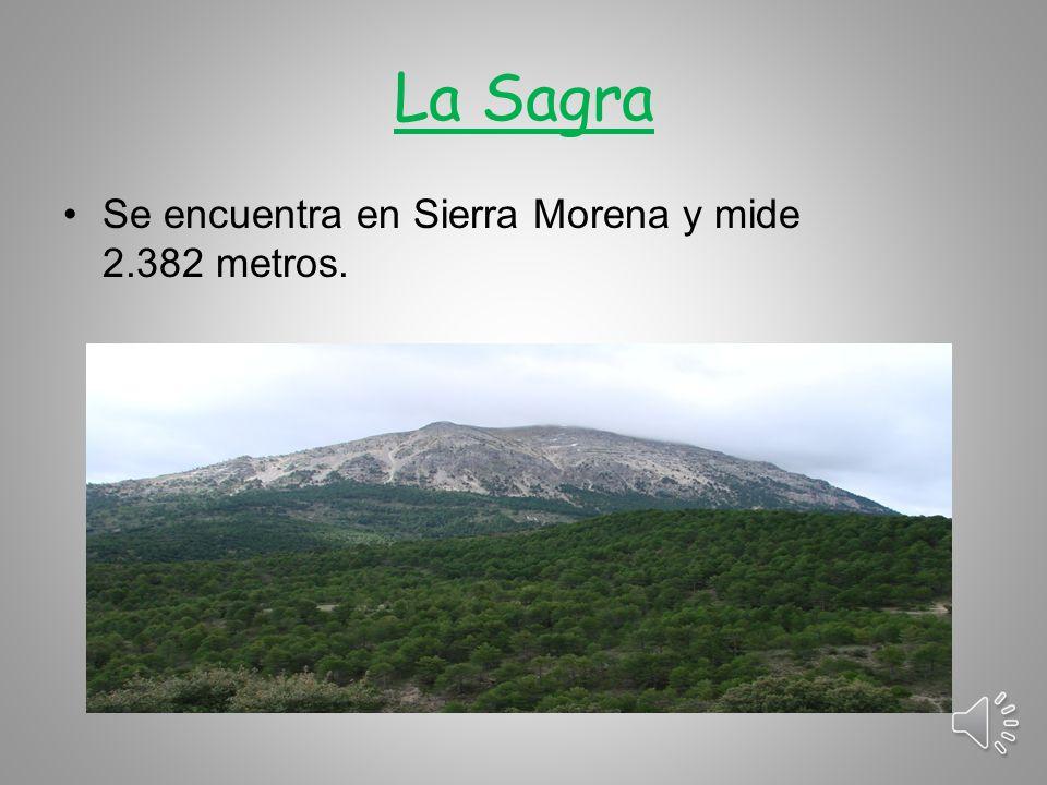 La Sagra Se encuentra en Sierra Morena y mide 2.382 metros.