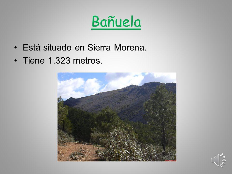 Bañuela Está situado en Sierra Morena. Tiene 1.323 metros.