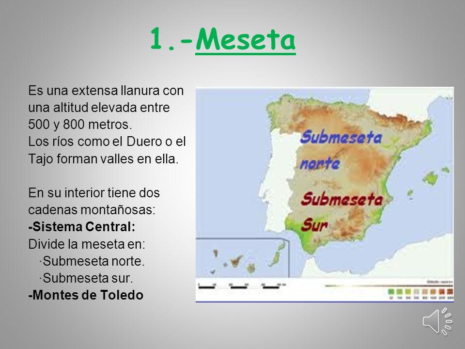 1.-Meseta Es una extensa llanura con una altitud elevada entre