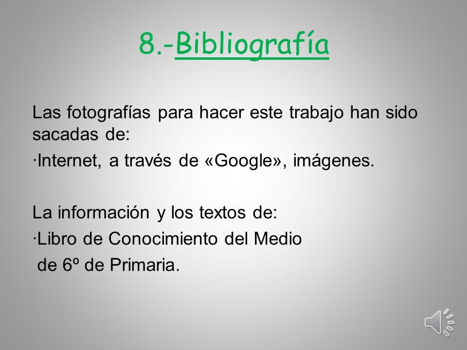 8.-Bibliografía