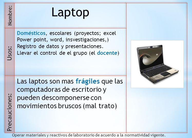 Laptop Domésticos, escolares (proyectos; excel. Power point, word, insvestigaciones,) Registro de datos y presentaciones.