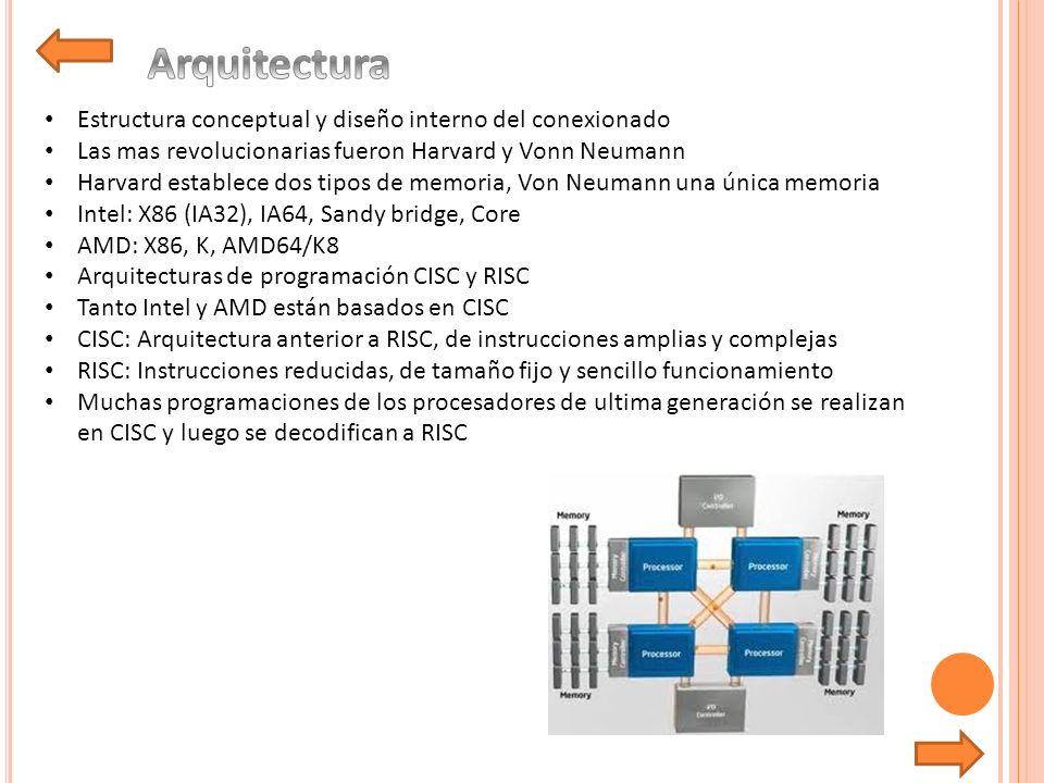 Arquitectura Estructura conceptual y diseño interno del conexionado