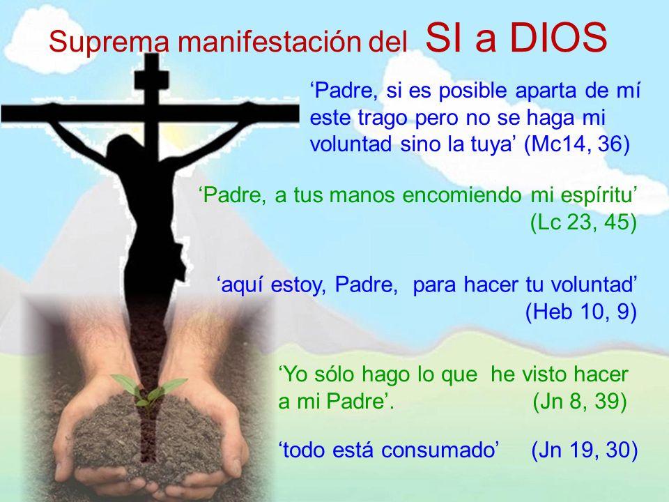 Suprema manifestación del SI a DIOS