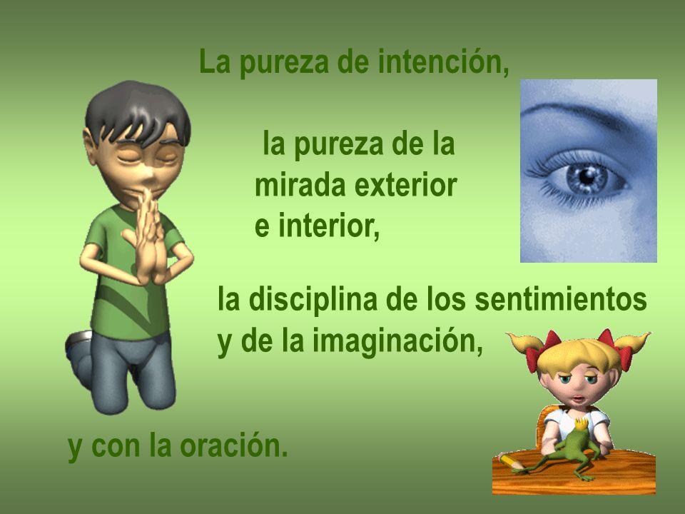 La pureza de intención, la pureza de la. mirada exterior. e interior, la disciplina de los sentimientos.