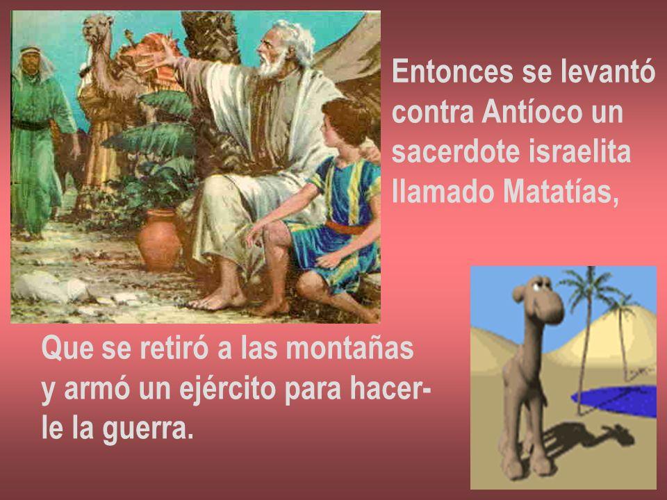 Entonces se levantócontra Antíoco un. sacerdote israelita. llamado Matatías, Que se retiró a las montañas.