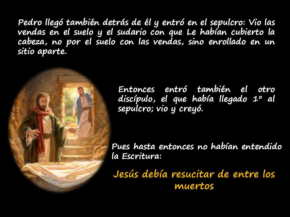 Jesús debía resucitar de entre los muertos