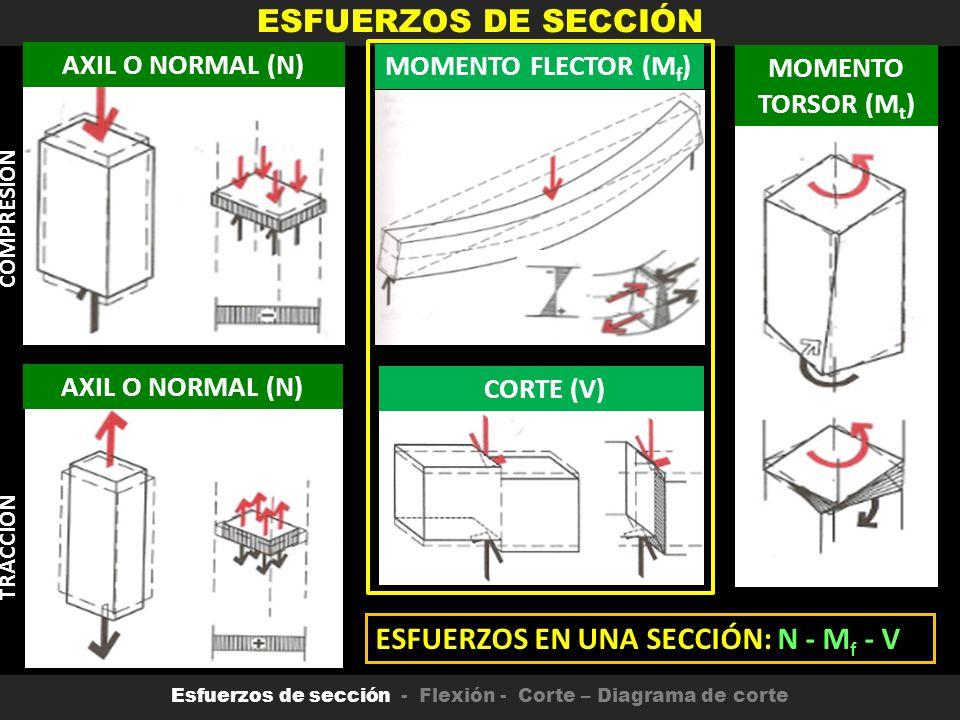 Famoso Estructura De La Uña Bosquejo - Ideas Para Esmaltes - aroson.com