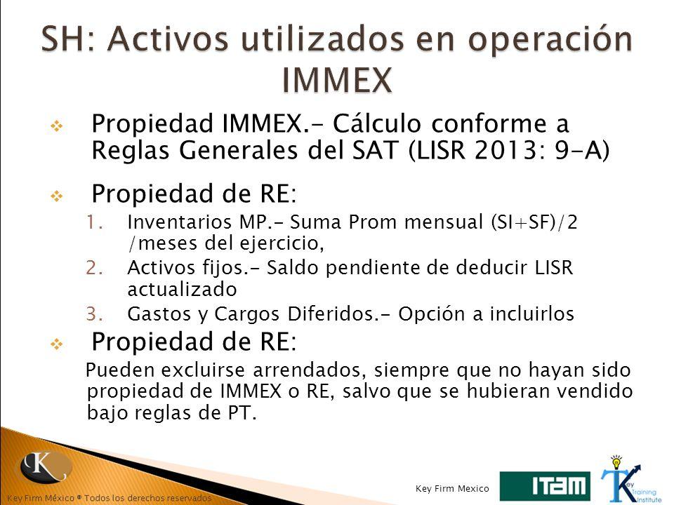 SH: Activos utilizados en operación IMMEX