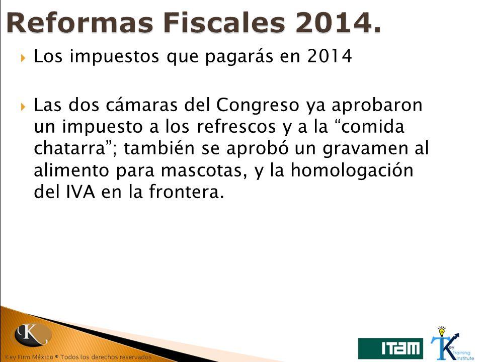 Reformas Fiscales 2014. Los impuestos que pagarás en 2014