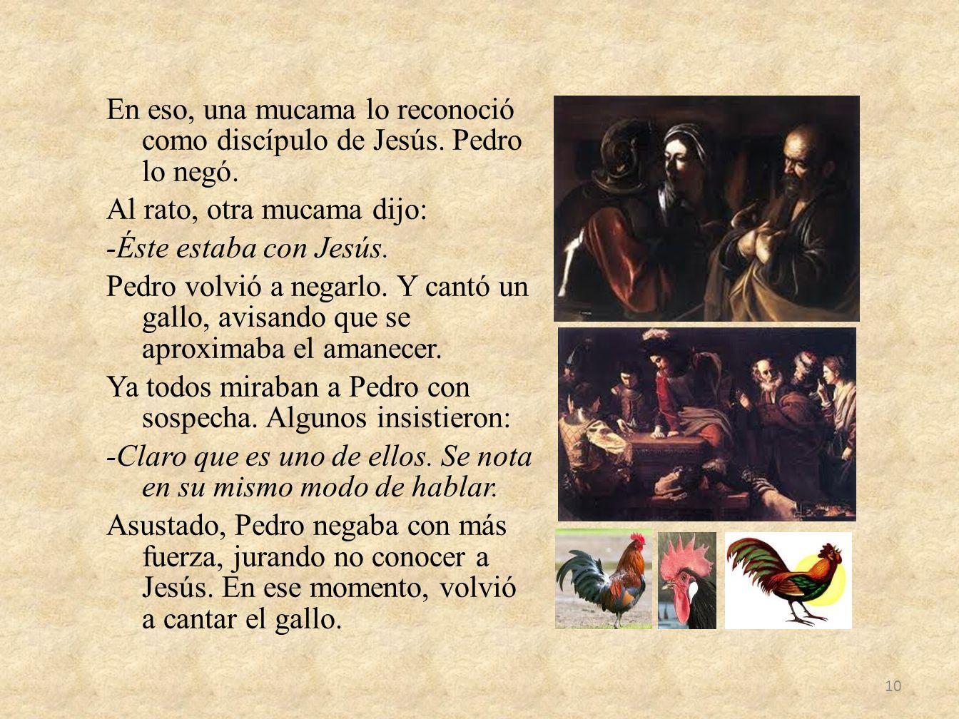 En eso, una mucama lo reconoció como discípulo de Jesús. Pedro lo negó