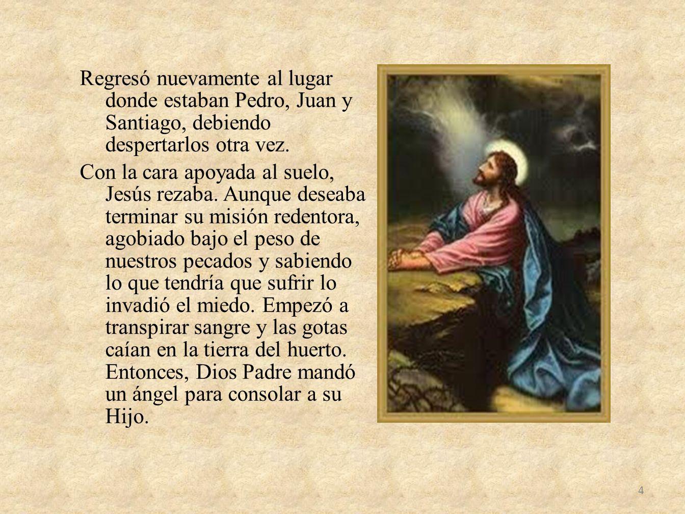 Regresó nuevamente al lugar donde estaban Pedro, Juan y Santiago, debiendo despertarlos otra vez.