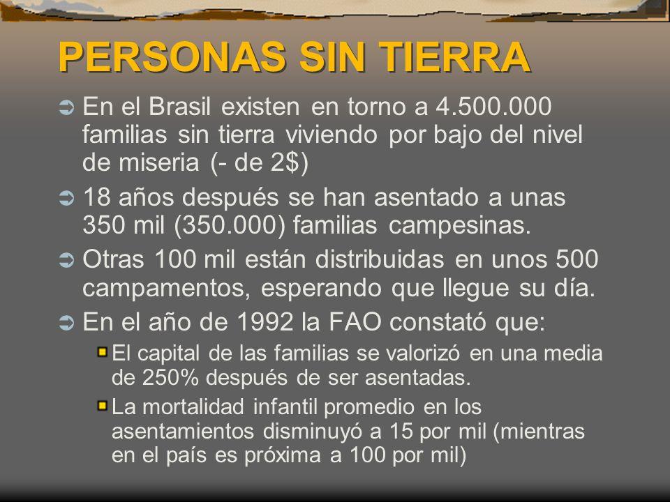 PERSONAS SIN TIERRA En el Brasil existen en torno a 4.500.000 familias sin tierra viviendo por bajo del nivel de miseria (- de 2$)