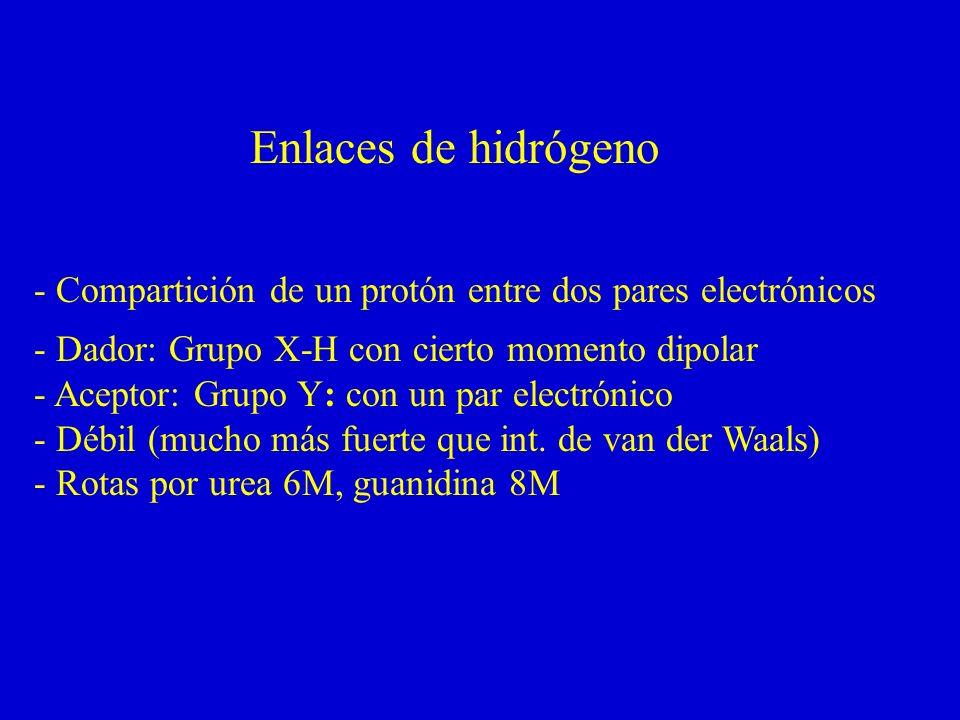 Enlaces de hidrógeno - Compartición de un protón entre dos pares electrónicos. - Dador: Grupo X-H con cierto momento dipolar.