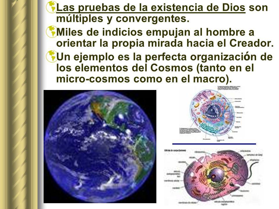 Las pruebas de la existencia de Dios son múltiples y convergentes.