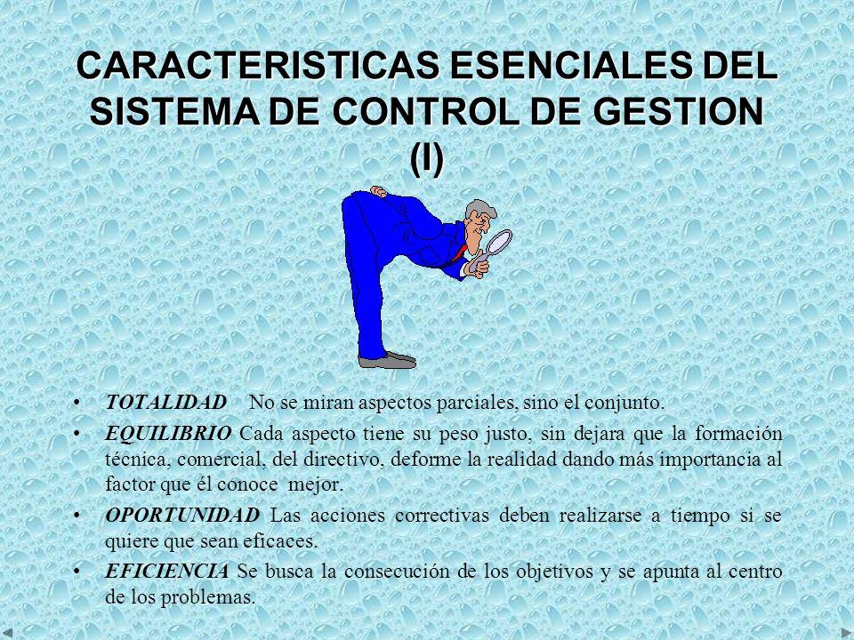 CARACTERISTICAS ESENCIALES DEL SISTEMA DE CONTROL DE GESTION (I)