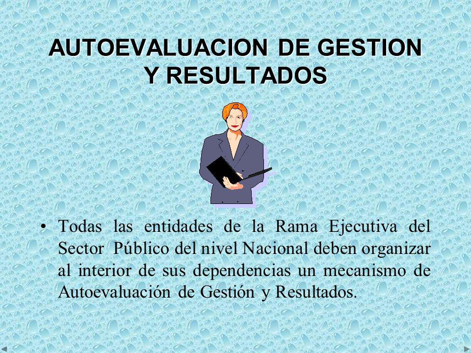 AUTOEVALUACION DE GESTION Y RESULTADOS