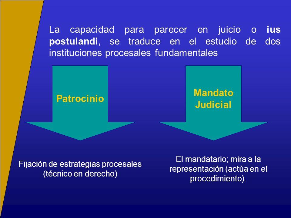 Patrocinio Mandato Judicial
