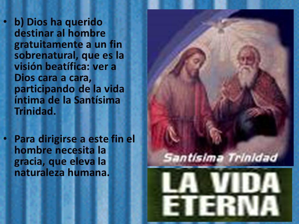 b) Dios ha querido destinar al hombre gratuitamente a un fin sobrenatural, que es la visión beatífica: ver a Dios cara a cara, participando de la vida íntima de la Santísima Trinidad.
