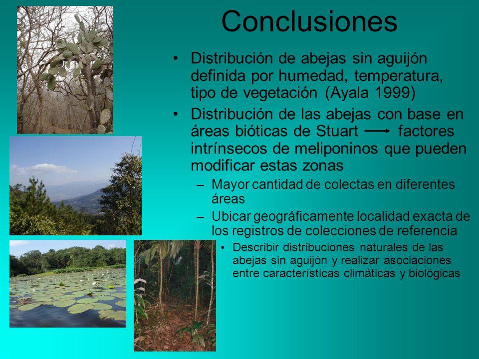 Conclusiones Distribución de abejas sin aguijón definida por humedad, temperatura, tipo de vegetación (Ayala 1999)