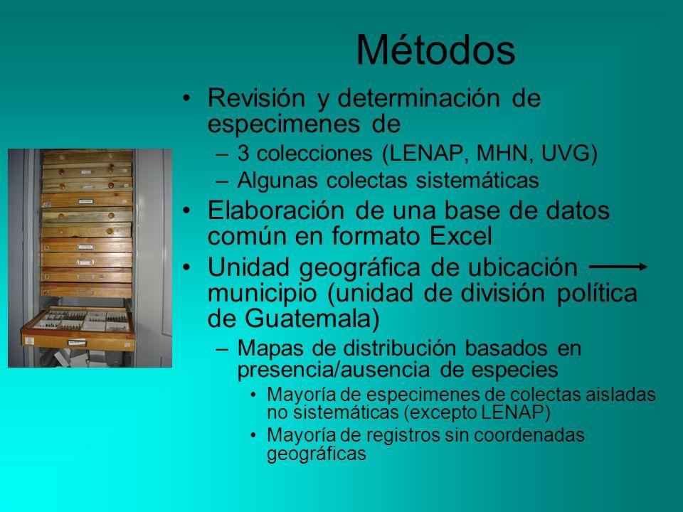 Métodos Revisión y determinación de especimenes de