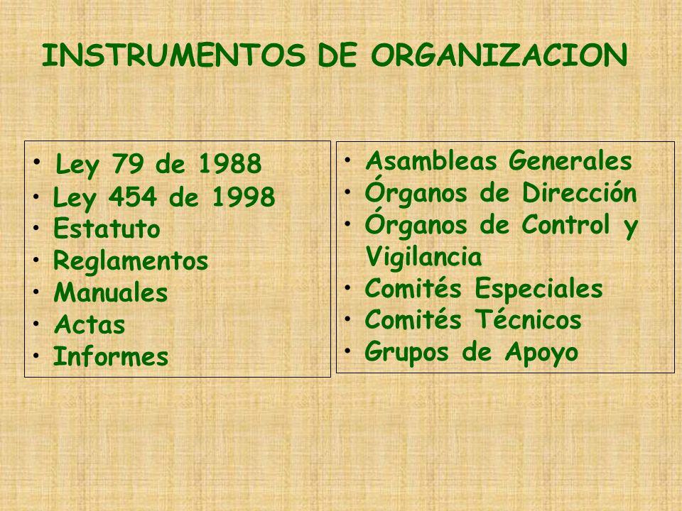 INSTRUMENTOS DE ORGANIZACION