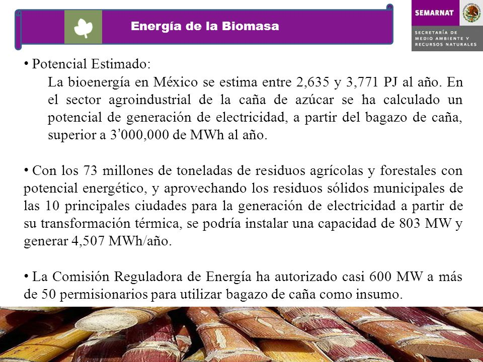 Energía de la BiomasaPotencial Estimado: