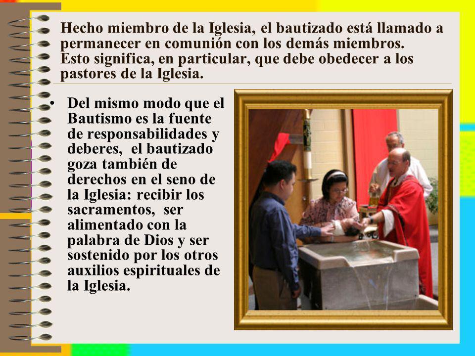 Hecho miembro de la Iglesia, el bautizado está llamado a permanecer en comunión con los demás miembros. Esto significa, en particular, que debe obedecer a los pastores de la Iglesia.
