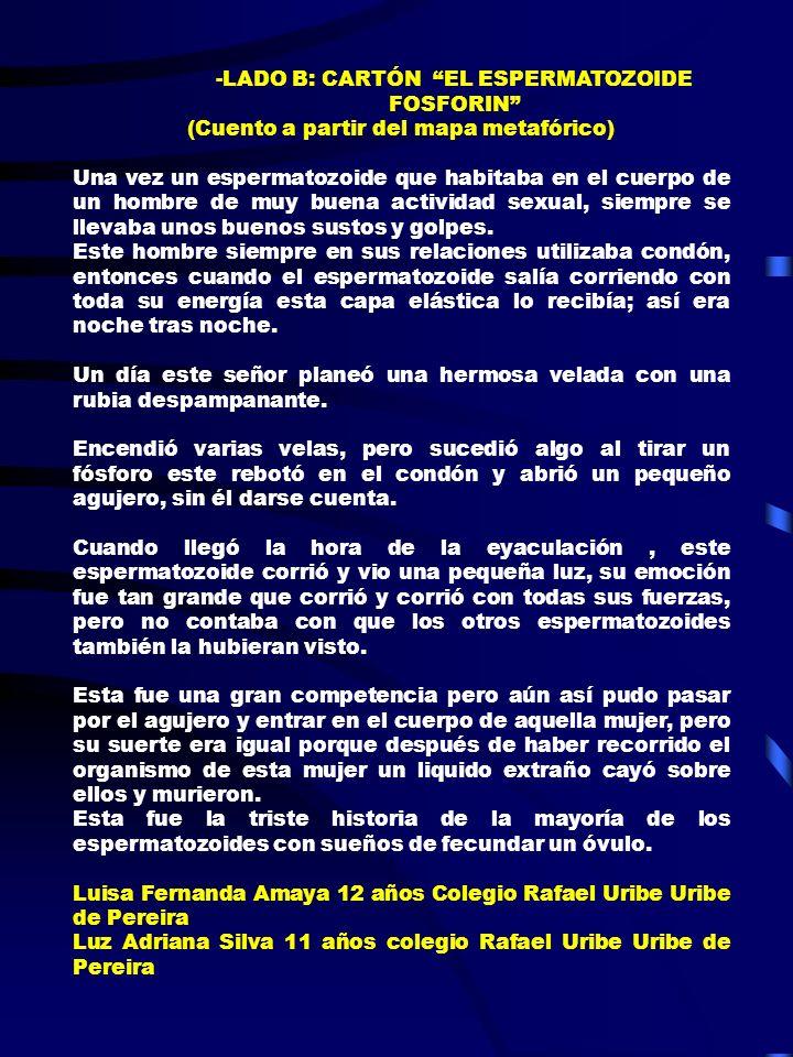 LADO B: CARTÓN EL ESPERMATOZOIDE FOSFORIN