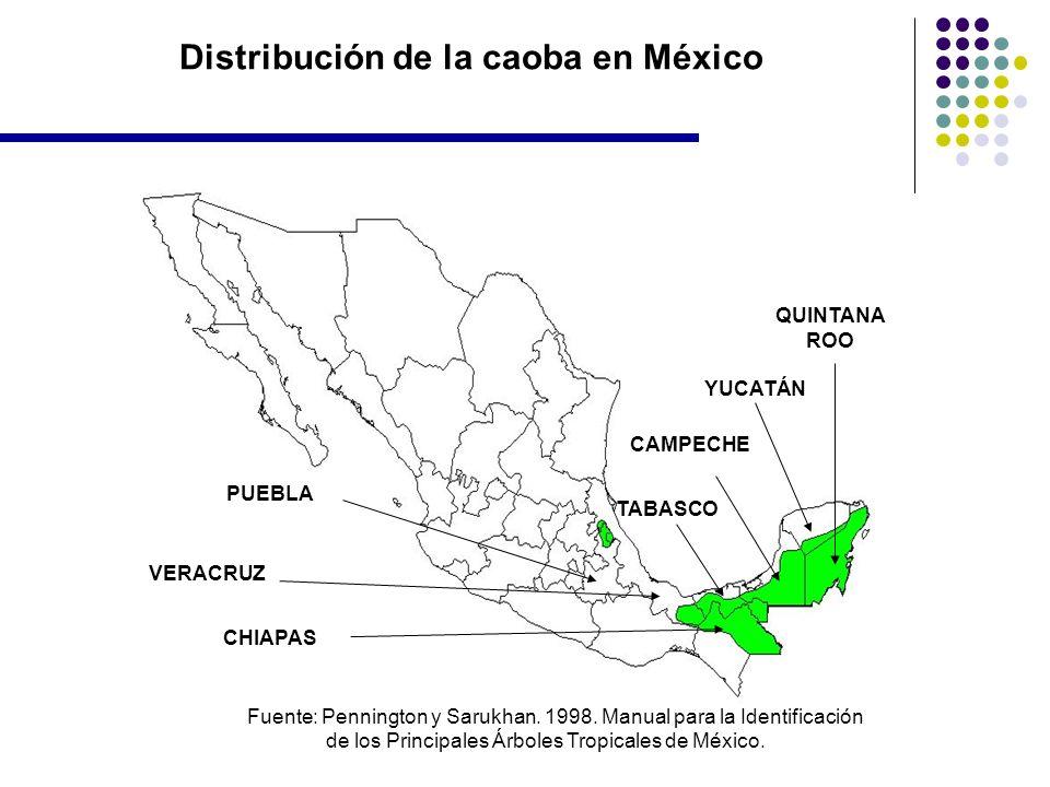 Distribución de la caoba en México