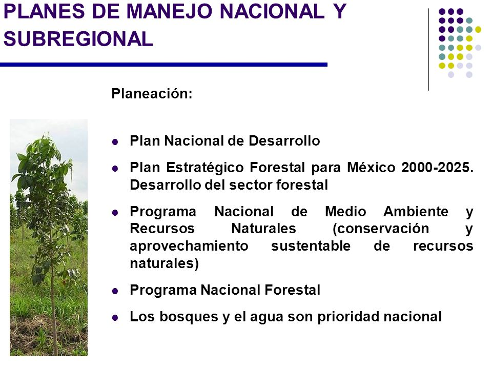 PLANES DE MANEJO NACIONAL Y SUBREGIONAL