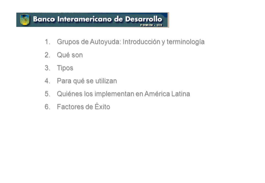 Grupos de Autoyuda: Introducción y terminología
