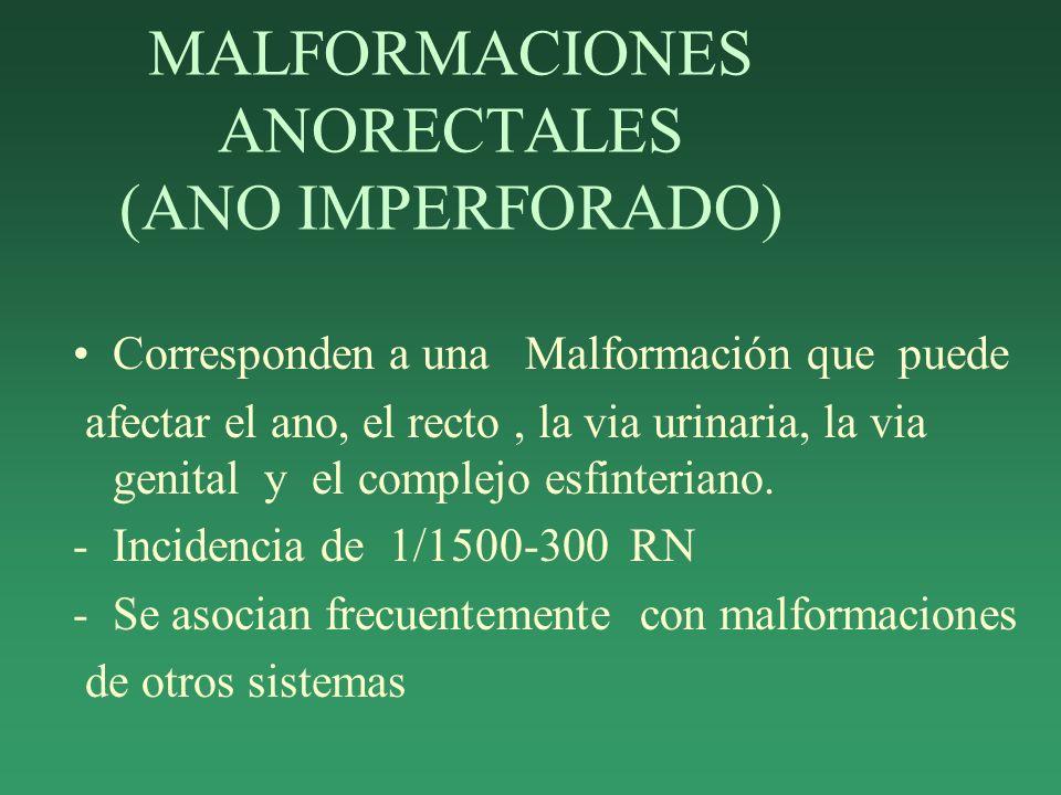 MALFORMACIONES ANORECTALES (ANO IMPERFORADO)