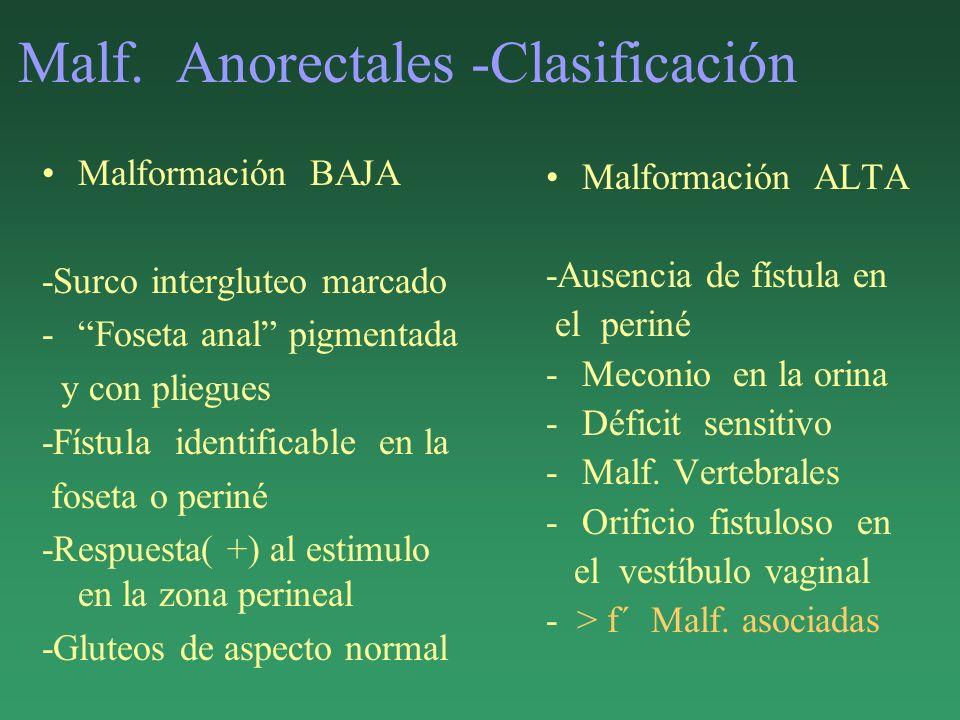 Malf. Anorectales -Clasificación