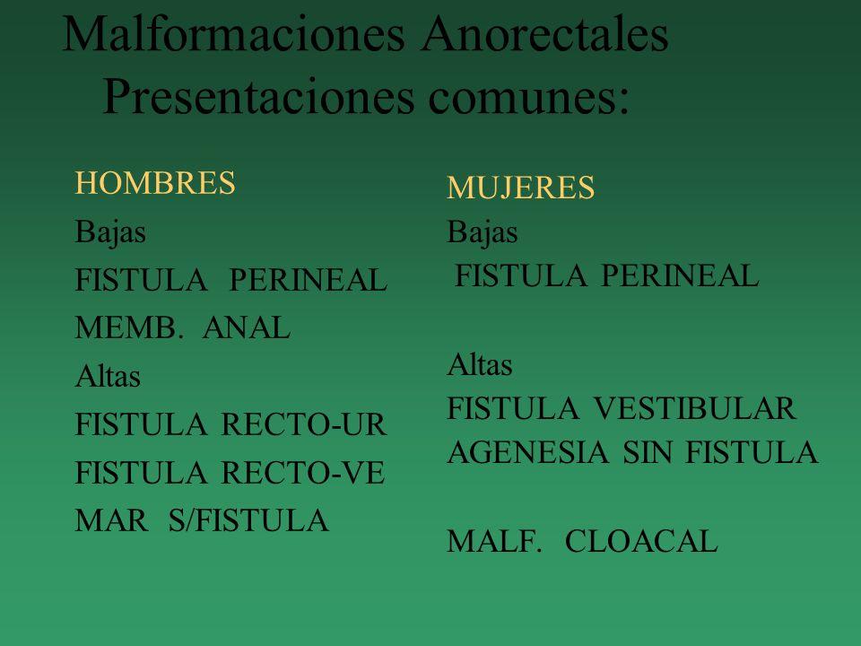 Malformaciones Anorectales Presentaciones comunes: