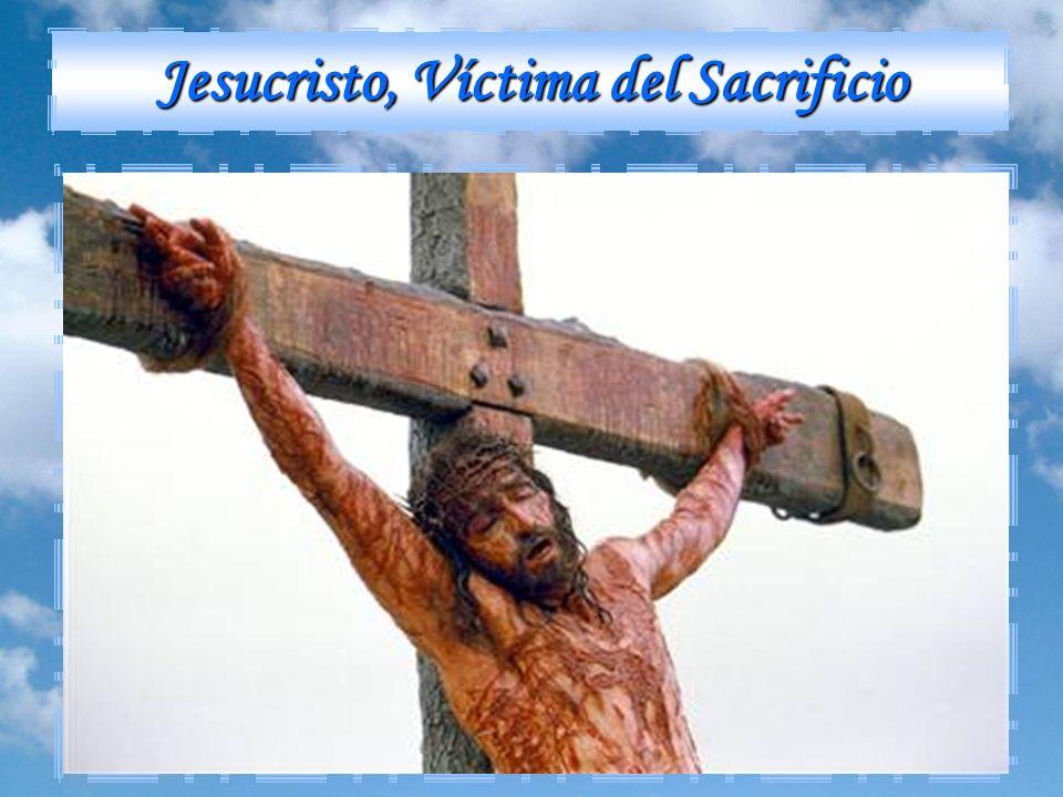 Jesucristo, Víctima del Sacrificio