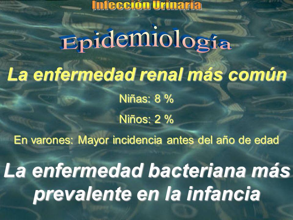 La enfermedad bacteriana más prevalente en la infancia