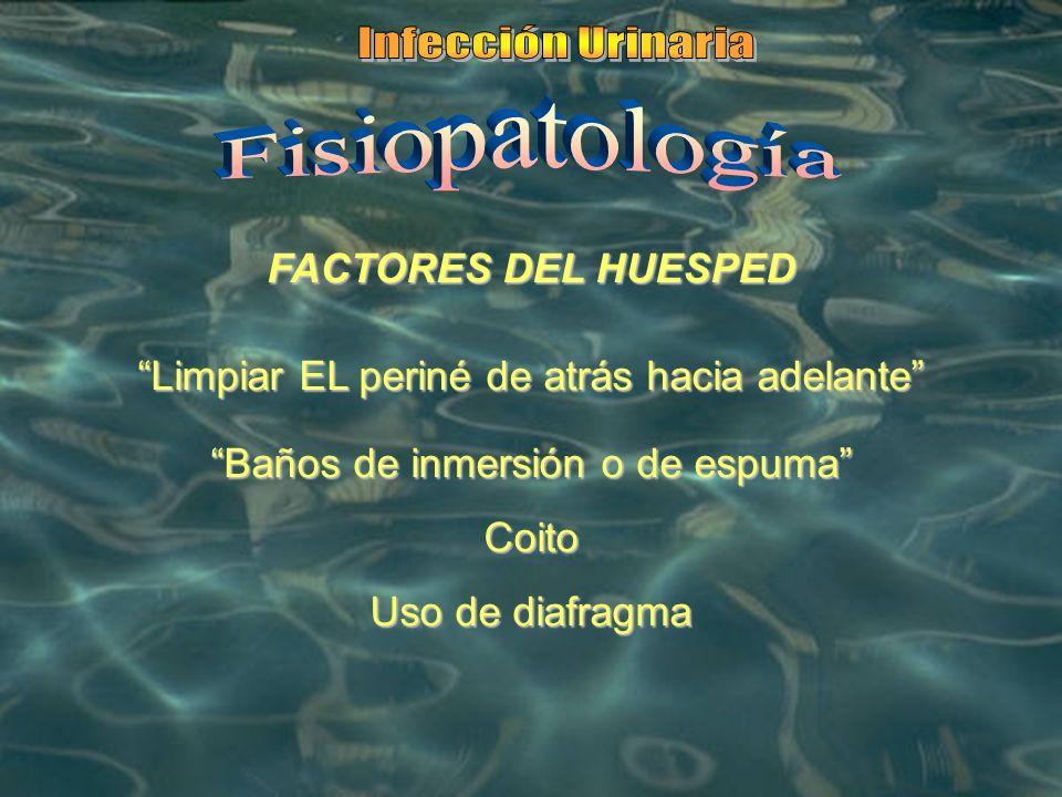 Infección Urinaria Fisiopatología FACTORES DEL HUESPED
