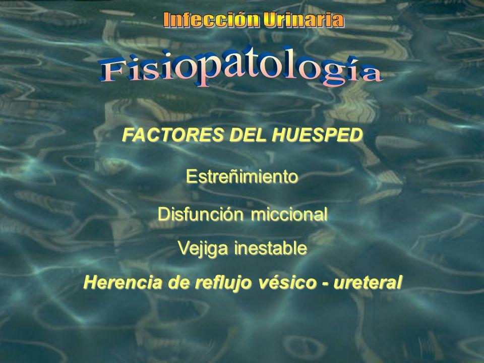Herencia de reflujo vésico - ureteral