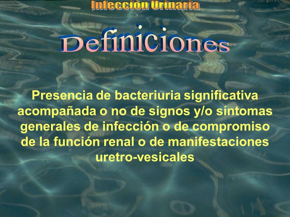 Infección Urinaria Definiciones