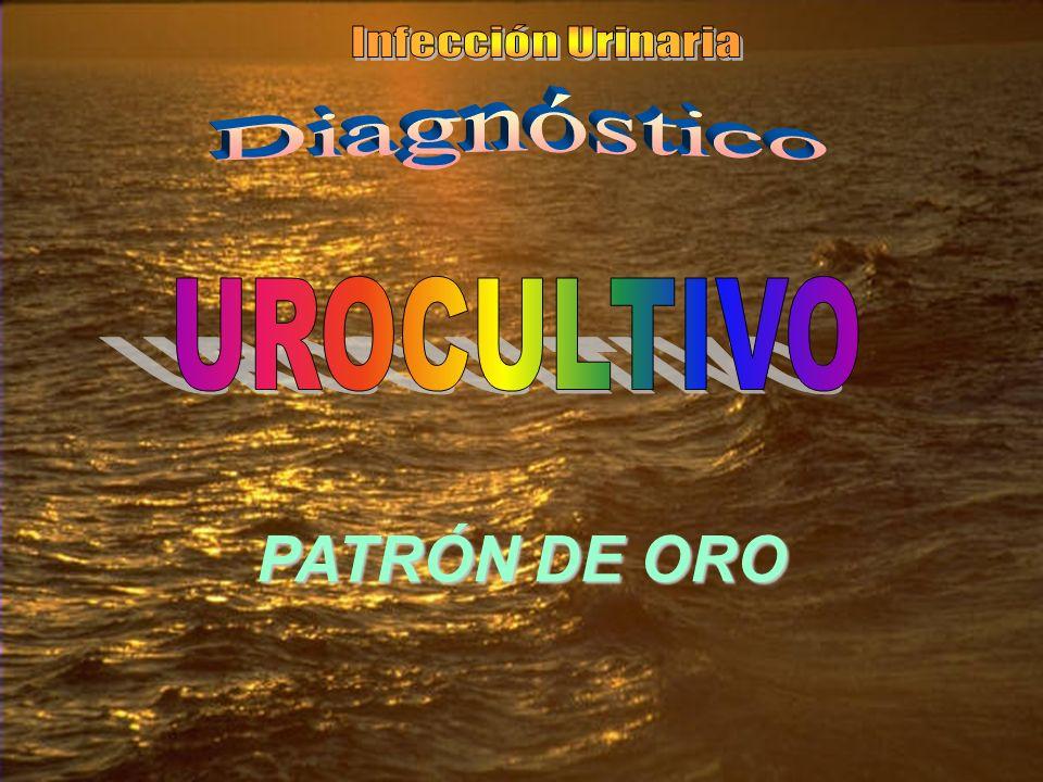 Infección Urinaria Diagnóstico UROCULTIVO PATRÓN DE ORO