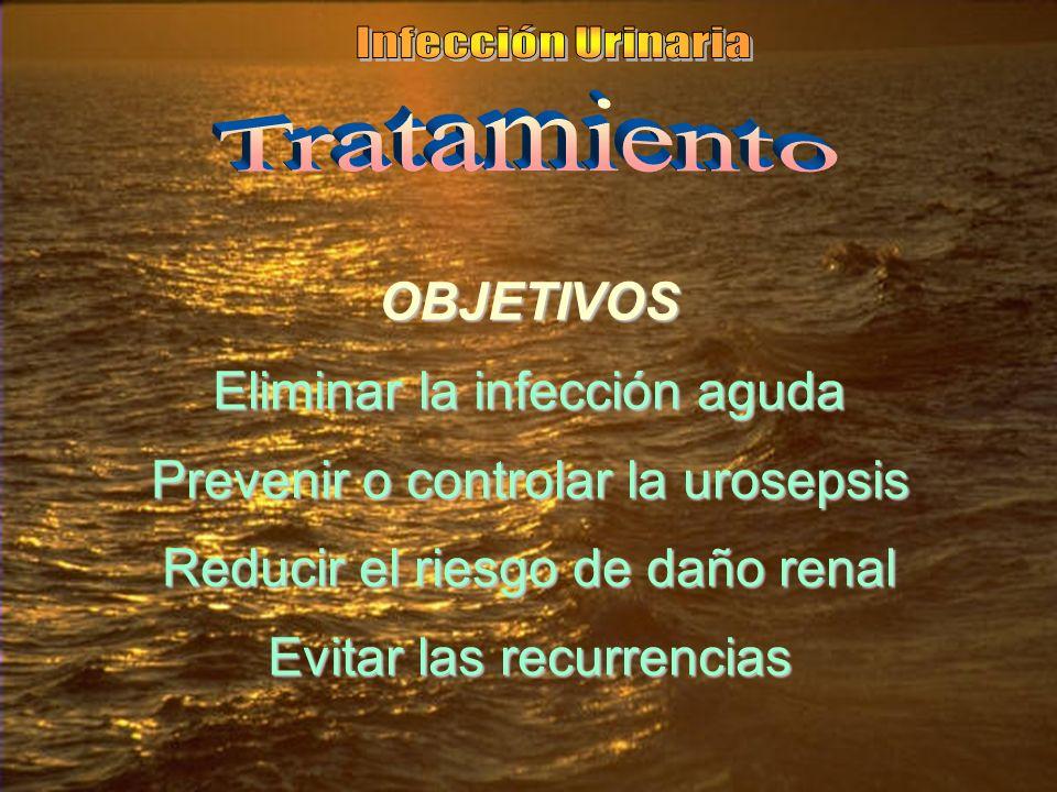 Eliminar la infección aguda Prevenir o controlar la urosepsis