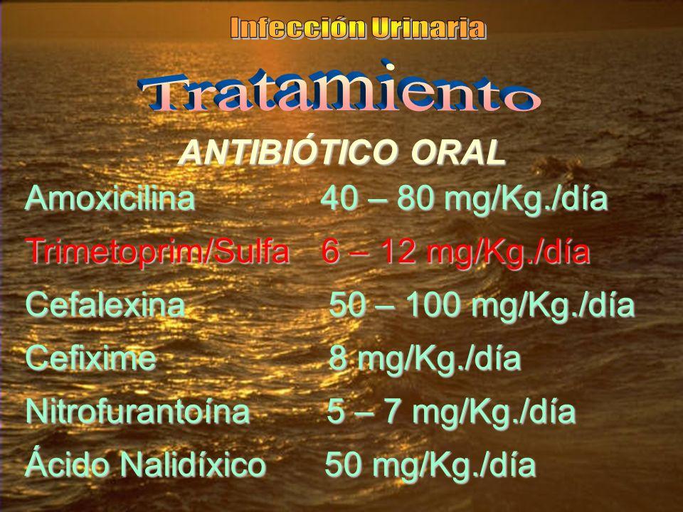 Infección Urinaria Tratamiento. ANTIBIÓTICO ORAL. Amoxicilina 40 – 80 mg/Kg./día. Trimetoprim/Sulfa 6 – 12 mg/Kg./día.