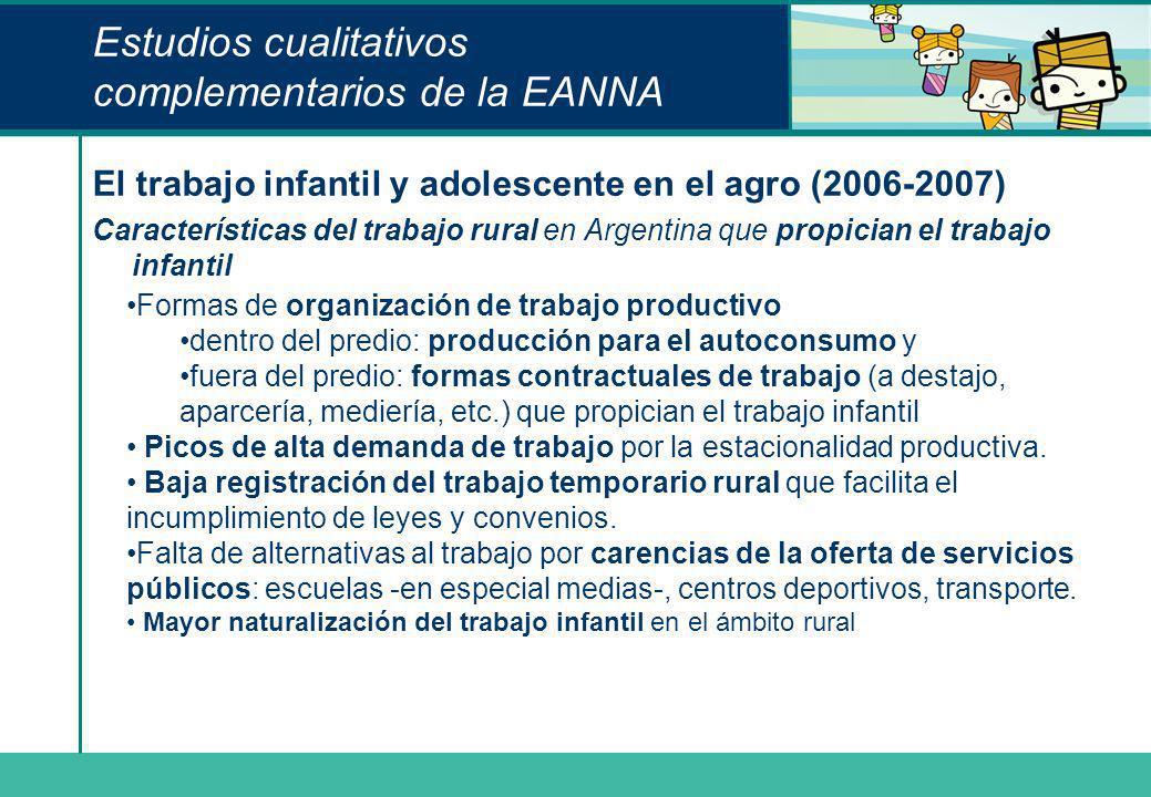 Estudios cualitativos complementarios de la EANNA