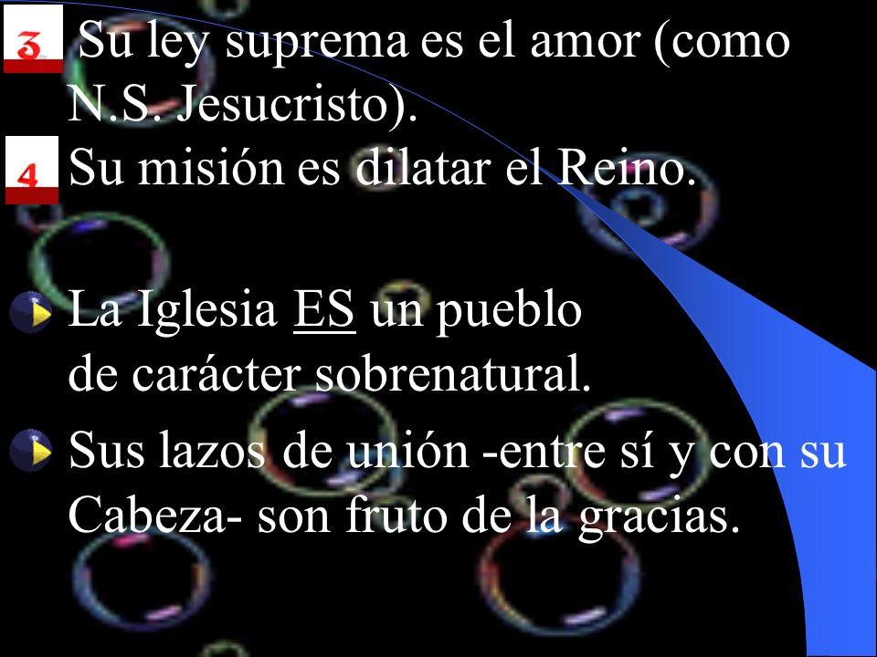 3. Su ley suprema es el amor (como N.S. Jesucristo).