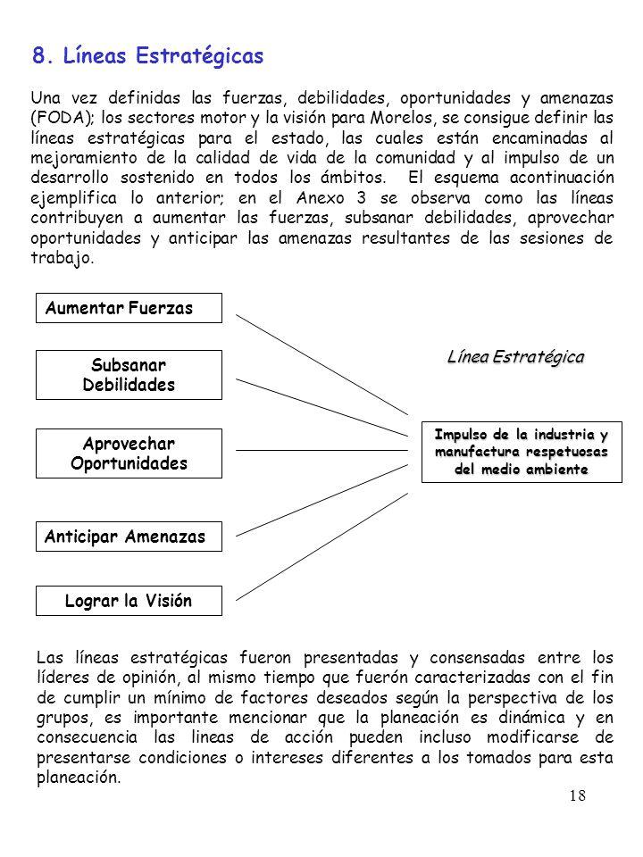 8. Líneas Estratégicas