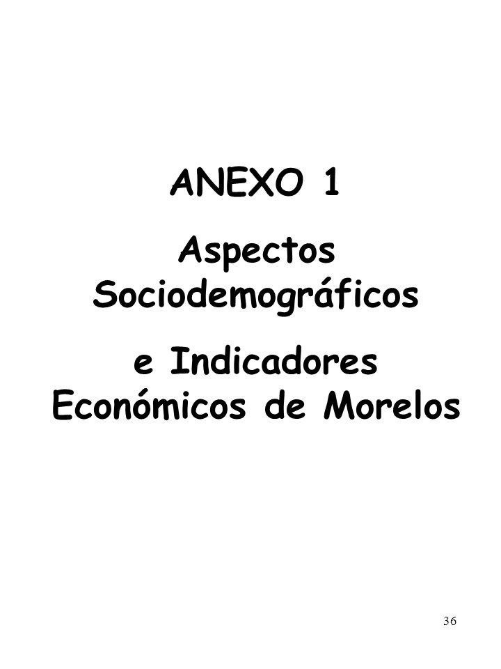 Aspectos Sociodemográficos e Indicadores Económicos de Morelos