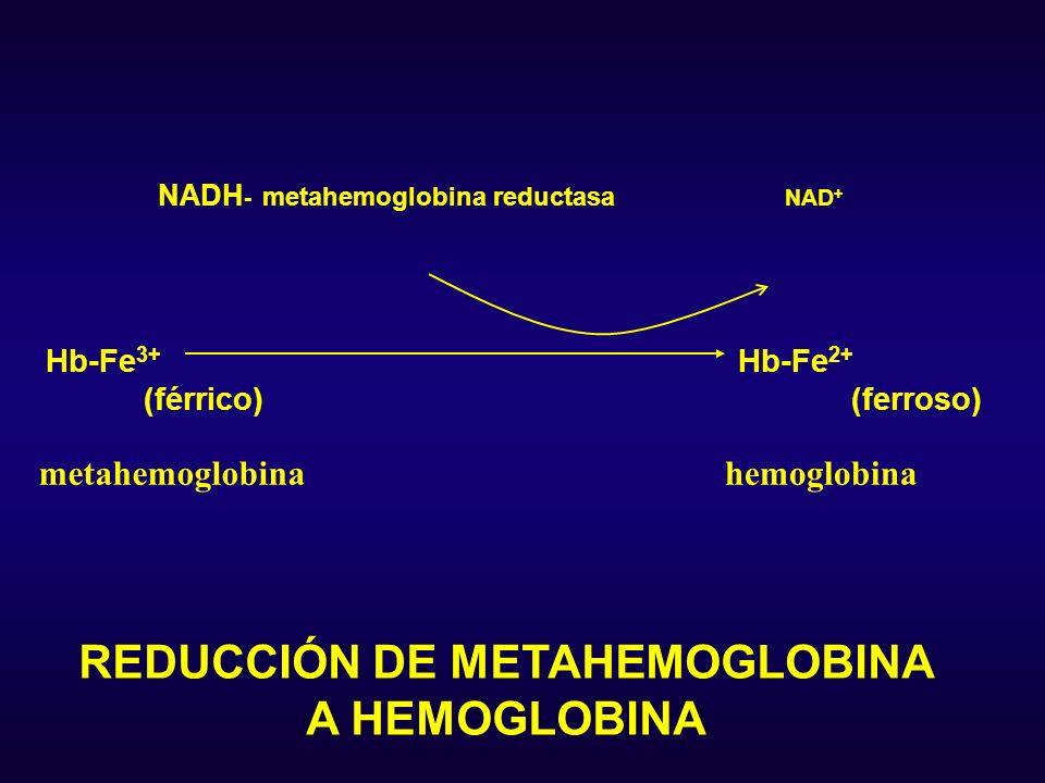 REDUCCIÓN DE METAHEMOGLOBINA