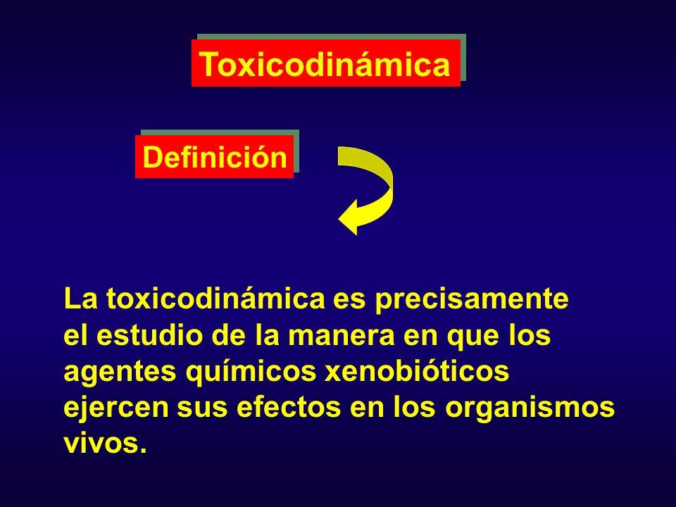 Toxicodinámica Definición La toxicodinámica es precisamente