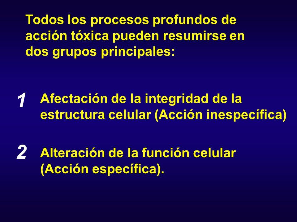 1 2 Todos los procesos profundos de acción tóxica pueden resumirse en