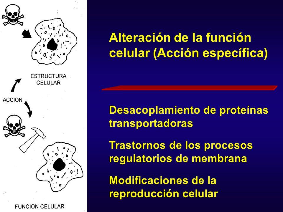 Alteración de la función celular (Acción específica)
